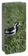 Magpie Lark Portable Battery Charger
