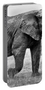 Majestic African Elephant Portable Battery Charger