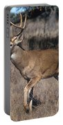 Male White-tailed Deer Portable Battery Charger
