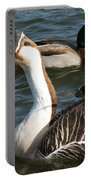 Mallard And Chinese Swan Goose - Anser Cygnoides - Featured In Wildlife Group Portable Battery Charger