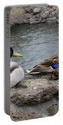 Mallard Duck Couple Portable Battery Charger