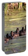 Mallard Ducks In A Row Portable Battery Charger by Travis Truelove