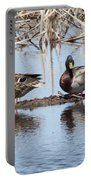 Mallard Ducks Sitting On A Sandbar  Portable Battery Charger