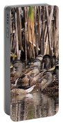 Mallards - Under Mothers Wing Portable Battery Charger