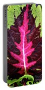 Many Leaves Of Coleus Portable Battery Charger