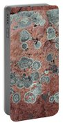 Map Lichen Portable Battery Charger