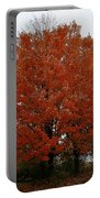 Maples In The Meadow Portable Battery Charger