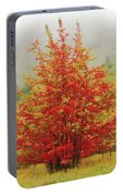 Maples In The Mist Portable Battery Charger
