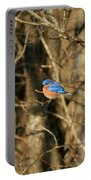 March Bluebird Portable Battery Charger