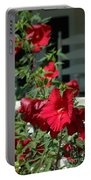 Martha's Vineyard Red Hibiscus And Porch Portable Battery Charger