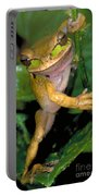 Masked Treefrog Portable Battery Charger