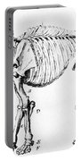 Mastodon Skeleton Drawing Portable Battery Charger