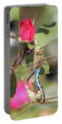 Mating Dragonfly Portable Battery Charger