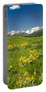 Meadow Landscape Portable Battery Charger