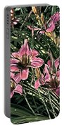 Meadow Sunrise Portable Battery Charger