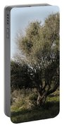 Mediterranean Wood Wiew Portable Battery Charger