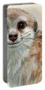 Meerkat 762 Portable Battery Charger