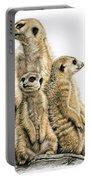 Meerkats Portable Battery Charger