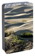 Mesquite Sand Dunes Portable Battery Charger