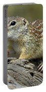 Mexican Ground Squirrel Portable Battery Charger