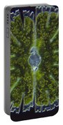 Micrasterias Sp. Algae Lm Portable Battery Charger by M. I. Walker