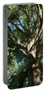 Mighty Oak Portable Battery Charger