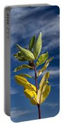 Milkweed Pods Against A Blue Sky Background Portable Battery Charger