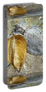 Milkweed Pods - Mirror Box Portable Battery Charger
