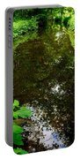 Mill Pond Stream In Green Portable Battery Charger