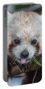 Mischievious Red Panda Portable Battery Charger
