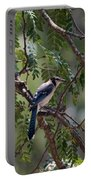 Mississippi Blue Jay Portable Battery Charger