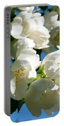 Mock Orange 4 Portable Battery Charger
