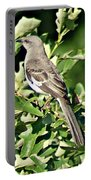Mockingbird I Portable Battery Charger
