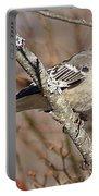 Mockingbird II Portable Battery Charger