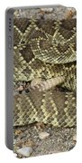 Mohave Diamondback Rattlesnake Coiled Portable Battery Charger