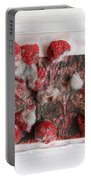 Moldy Raspberries Portable Battery Charger