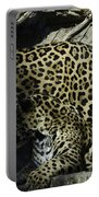 Mom And Baby Cheetah Portable Battery Charger