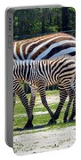 Mom N Baby Stripes Portable Battery Charger
