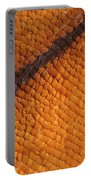 Monarch Butterfly Wing Scales Portable Battery Charger