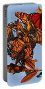 Monarch Migration Portable Battery Charger