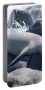 Monk Seal Portable Battery Charger