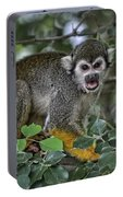 Monkeying Around Portable Battery Charger
