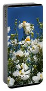 Monterey Beauty Portable Battery Charger