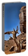 Monument Valley Lone Tree Portable Battery Charger