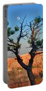 Moon Over Bryce Canyon Portable Battery Charger