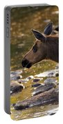 Moose Baby 3 Portable Battery Charger