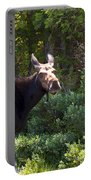 Moose Baxter State Park 4 Portable Battery Charger