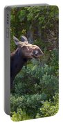 Moose Baxter State Park Maine 3 Portable Battery Charger