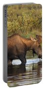 Moose Drinking In A Pond, Tombstone Portable Battery Charger
