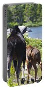 Moose Ends Baxter State Park Maine Portable Battery Charger